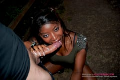 Jasmine Webb - Hot Ebony Dogging (Thumb 08)